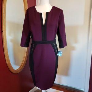 Purple & black color blocked dress